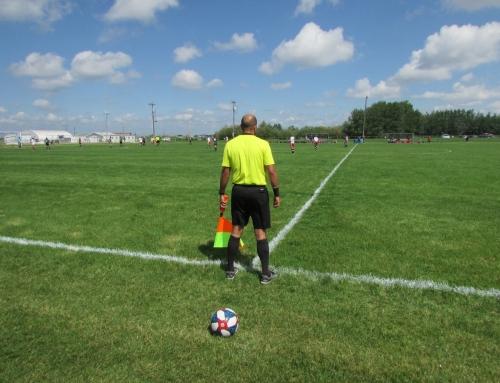AMSL: 28th season recap